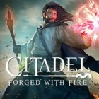 Jocul Citadel: Forged with Fire