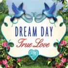 Jocul Dream Day True Love
