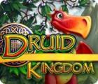 Jocul Druid Kingdom