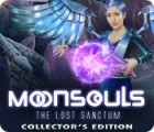 Jocul Moonsouls: The Lost Sanctum Collector's Edition