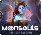 Jocul Moonsouls: The Lost Sanctum