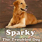 Jocul Sparky The Troubled Dog