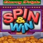 Jocul Spin & Win
