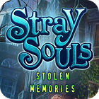 Jocul Stray Souls: Stolen Memories
